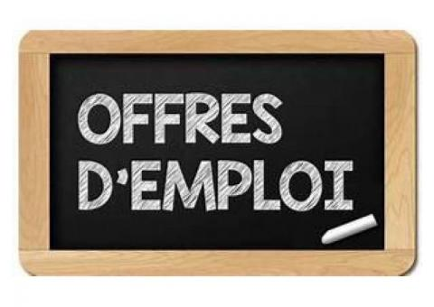 BUSINESS IT ou développer